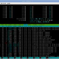 Asus RS720, 2 x Opteron 6200, htop, 64GB RAM